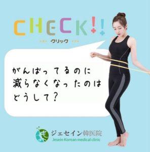 海外輸入、日本から通販できる韓国の漢方ダイエット
